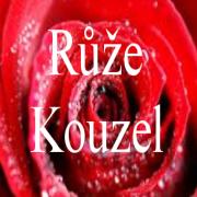 logo Růže Kouzel