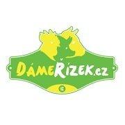 logo DámeŘízek