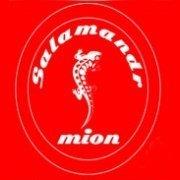 logo Salamandrmion