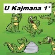 logo U Kajmana 1