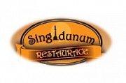 logo Singidunum